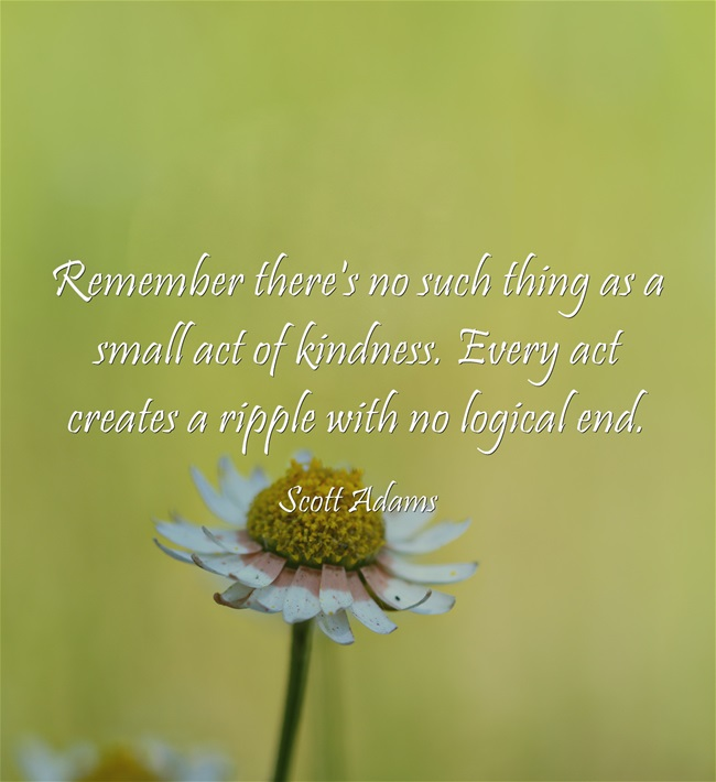 remeber-theres-no-such-things-as-a-smallest-act-of-kindness